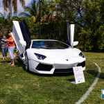 2013 Boca Raton Concours d'Elegance